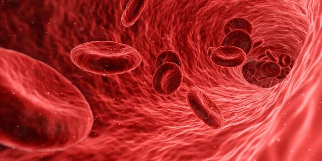 blood circulation chiropractic