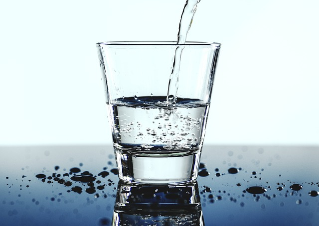 hydration spinal health
